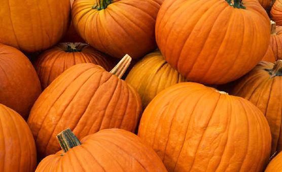 PumpkinPhoto