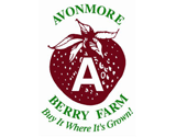 Avonmore Berry Farms Logo