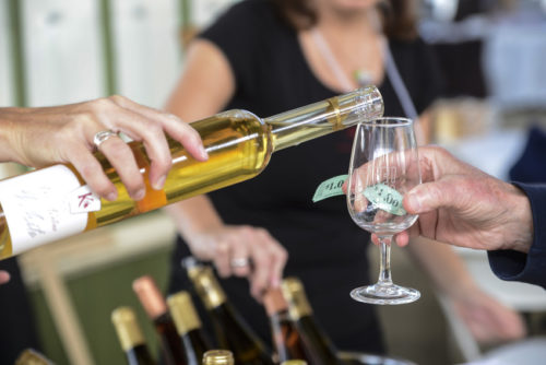 take a self guided or guided wine tour in prince edward county