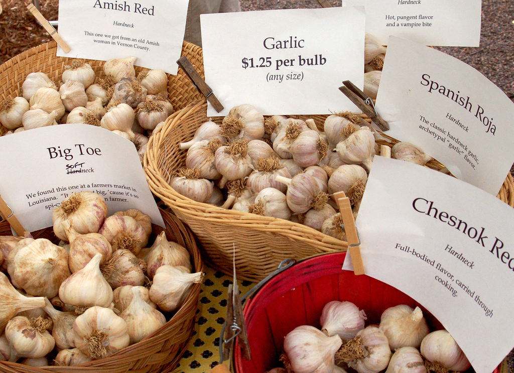 garlic for sale at the Verona Lions Garlic Festival, one of the food festivals on this list.