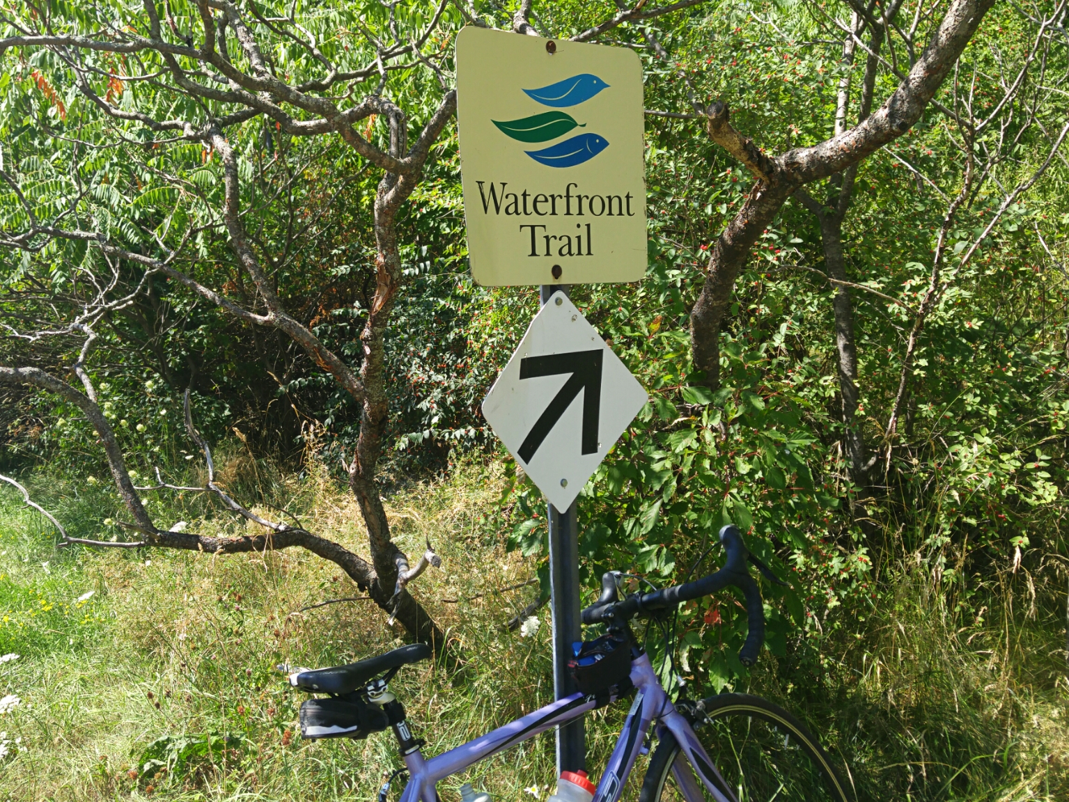 waterfront trail cycling in the 1000 islands ontario