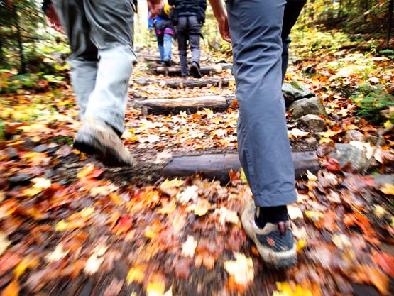 hiking-cycling-fall-4