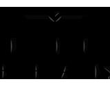 Lumina Borealis Logo