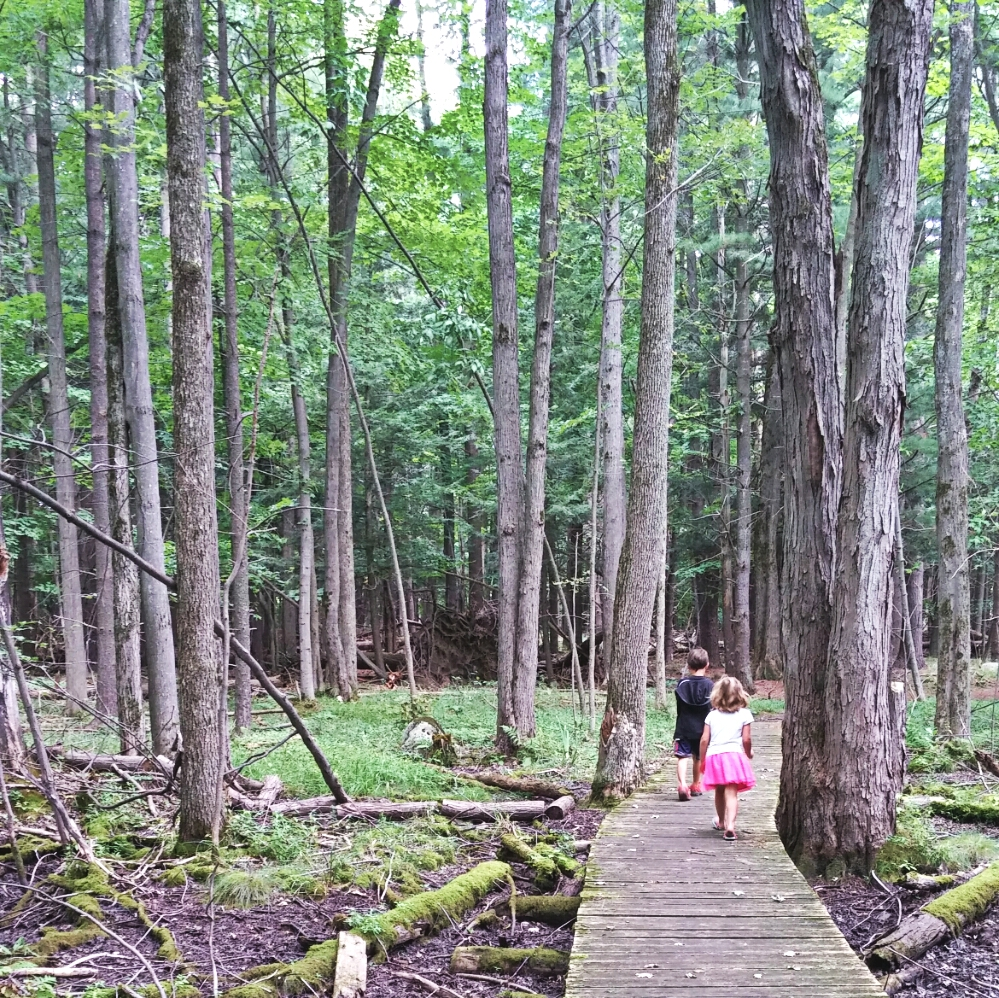 Hiking along the trails at the Upper Canada Migratory Bird Sanctuary.